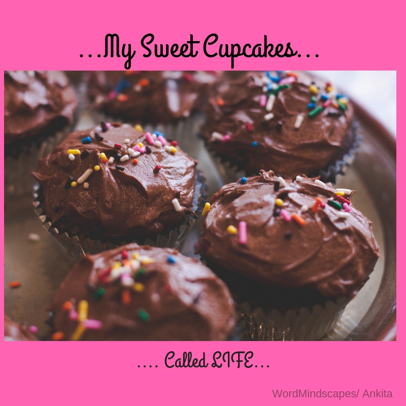 My Sweet Cupcakes...